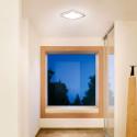 STEINEL - Luminaire intérieur à détection RS LED D2 Z-Wave