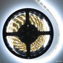 Ruban de LED blanches 3528 - 5m